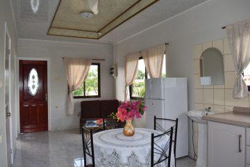 klein-wanica-overzicht-benedenverdieping-4